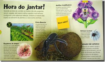 assustadores_insetos2