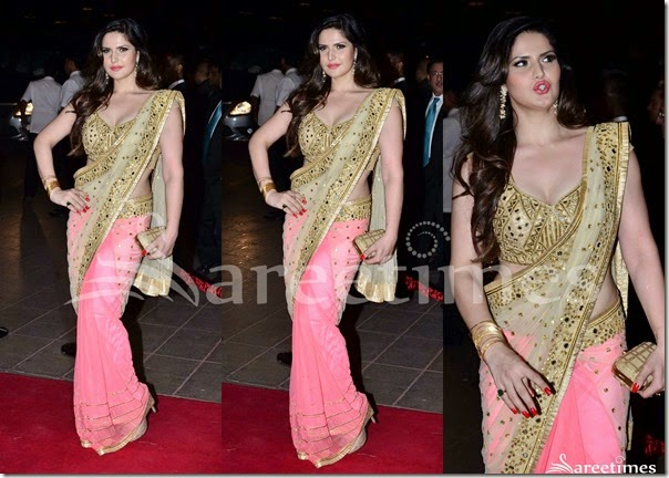 Zarine_Khan_Half_and_Half_Saree