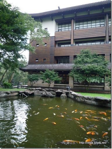 緣道觀音廟-池塘