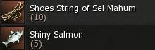shoes_salmon