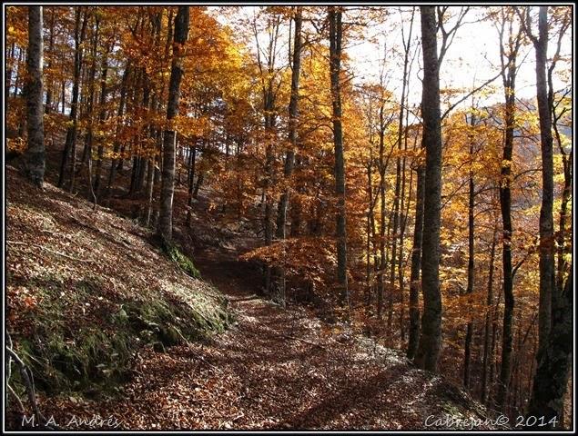 Lantz otoño 063