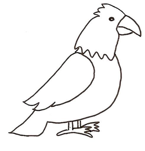 Dibujo De Una Aguila Facil