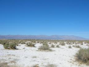 148 - El Valle de la Muerte.JPG