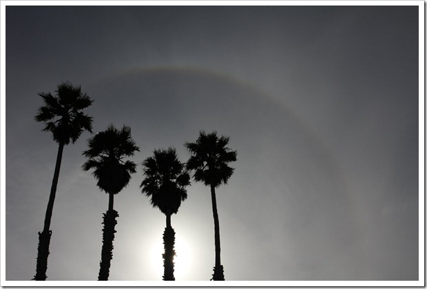 One Word Wednesday: Sundog