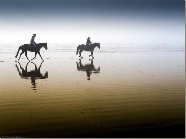 La beauté des reflets en photographie-004