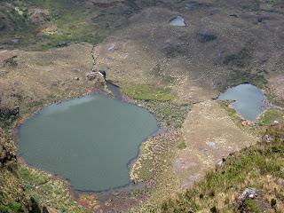 Chingaza-Sur-Organos (14).jpg