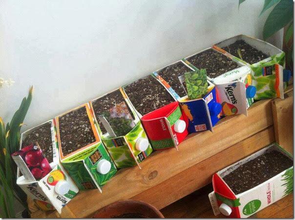 reciclar huerto urbano (2)