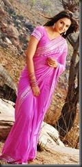Ragini Dwivedi in saree