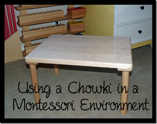Homeschool Room - Chowki - Montessori Floor Table - B