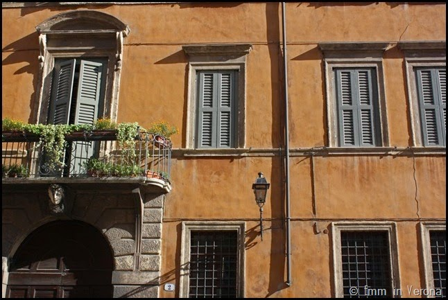Windows and Doorways of Verona (4)