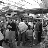 Shanghai - Pets market - Le commerce du criquet