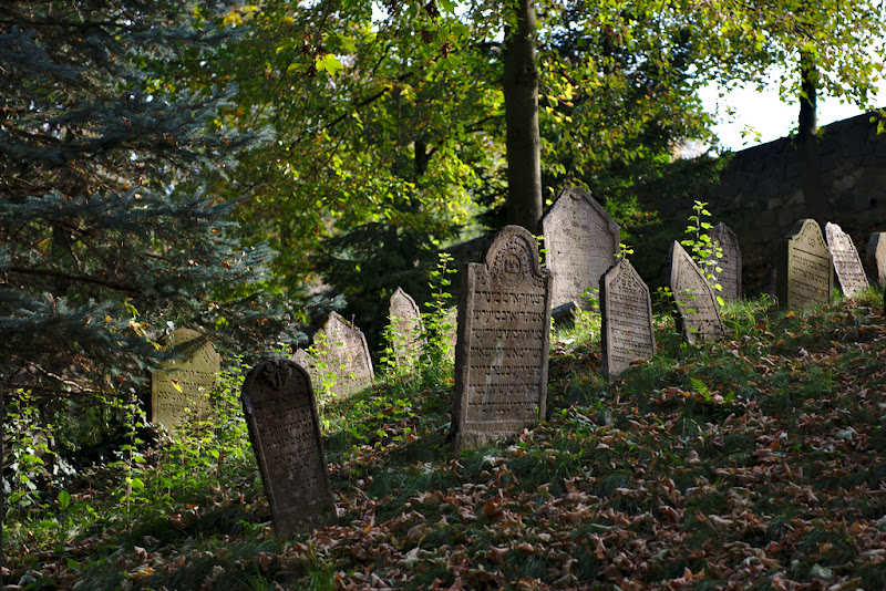 Chaos and order, the Jewish cemetery from Trebic, Czech Republic.