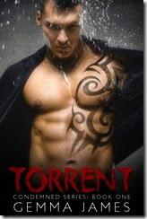 TorrentEbook