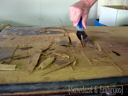 Removing damaged wood veneer {Sawdust and Embryos}