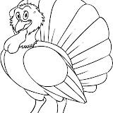 how-to-draw-a-cartoon-turkey-step-7.jpg