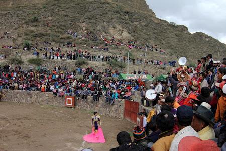 Iunia Pasca: Lupta de tauri in Peru