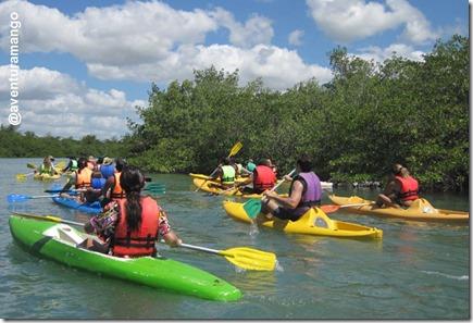 Grupo de caiaque na Lagoa Guaraíras
