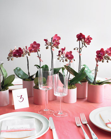 I love the choice of an unexpected flower on a bridal shower table like these orchids. (marthastewartweddings.com)
