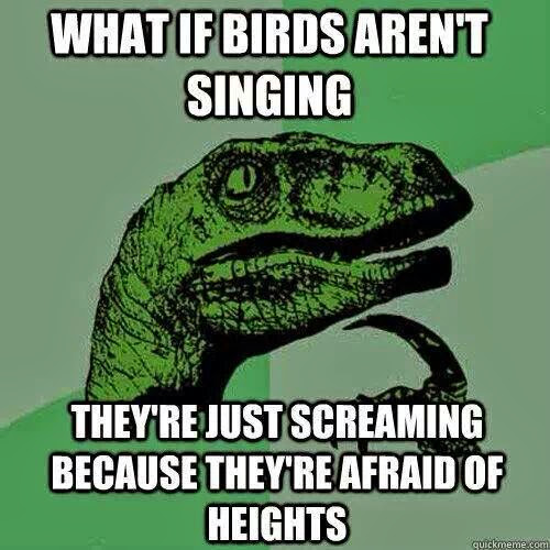 What If Birds Are Not Singing ? funny image lol lmao rofl humour haha screaming singing birds