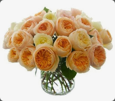 just roses michael george flowers1555433_678609425495056_1882768103_n