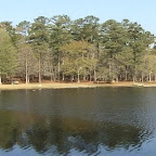 Little Pee Dee State Park.jpg