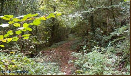 Foz de Benasa - camino a lo largo del barranco