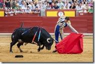 El Cid ante un ejemplar de Miranda y Moreno  en Ciudad Real