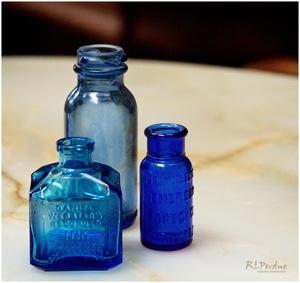 Bluebottles