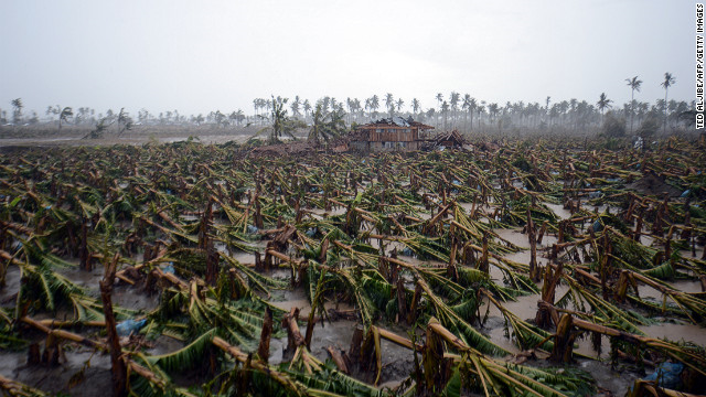 Typhoon Bopha toppled thousands of banana trees on a plantation in New Bataan, Compostela Valley province, in the Philippines on Friday, 7 December 2012. CNN