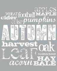 fall sky gray