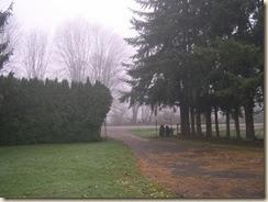 fogbound