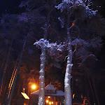 2013_02_09_V_Zimowe_Spotkanie_Rowerzystow_15.JPG