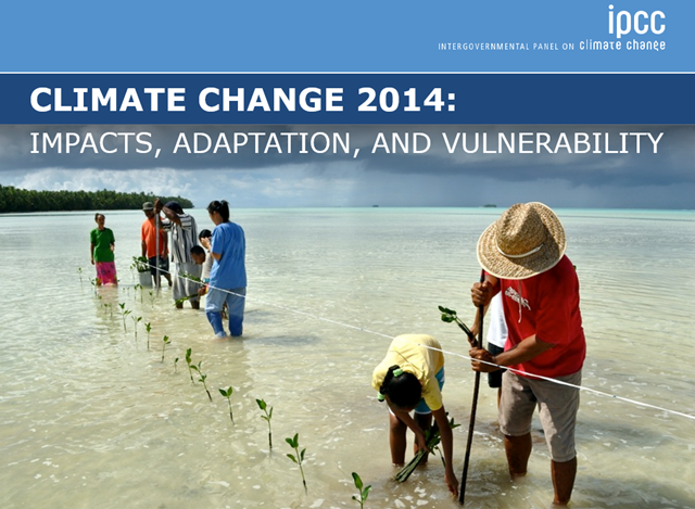 The cover of the IPCC report, 'Climate Change 2014: Impacts, Adaptation, and Vulnerability'. The photo shows people planting mangrove seedlings as a classroom project in Funafala, Tuvalu. Photo: David J. Wilson / IPCC