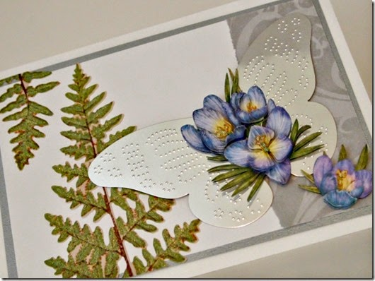 Butterfly and Iris Card