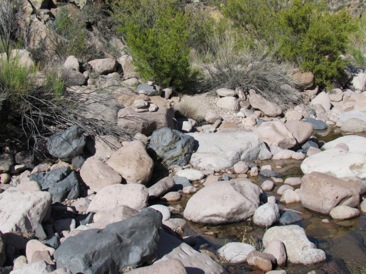 SuperstitionMtnshike-23-2012-11-13-21-45.jpg