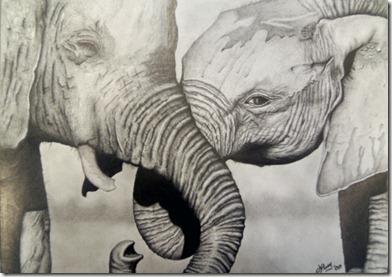 elefantes1