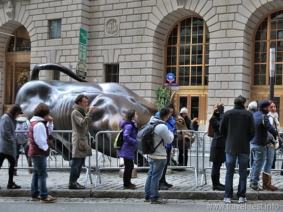 Bull on Wallstreet