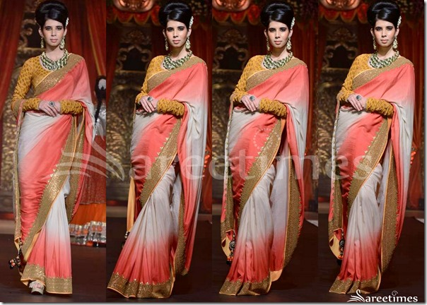 Vikram_Phadnis_Dual_Color_Saree