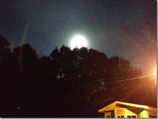moon over studio