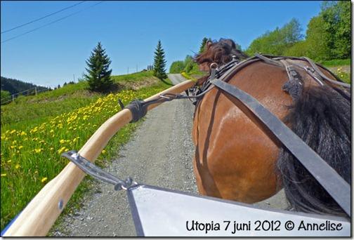 2012-7juni-pia_01