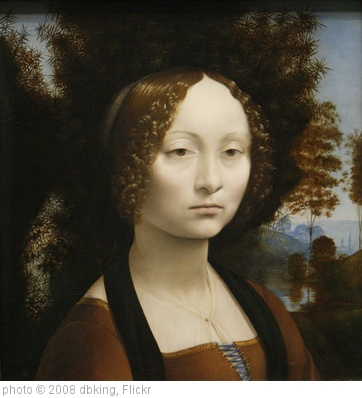 'Leonardo Da Vinci's