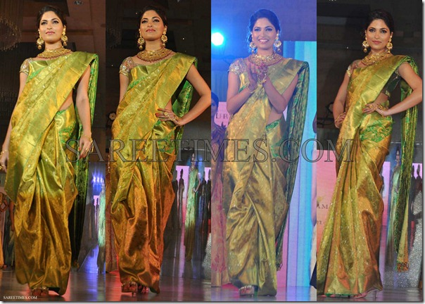 Parvathy_Omankuttan_Palam_Silk_Saree