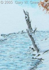 First Snow CRdet170