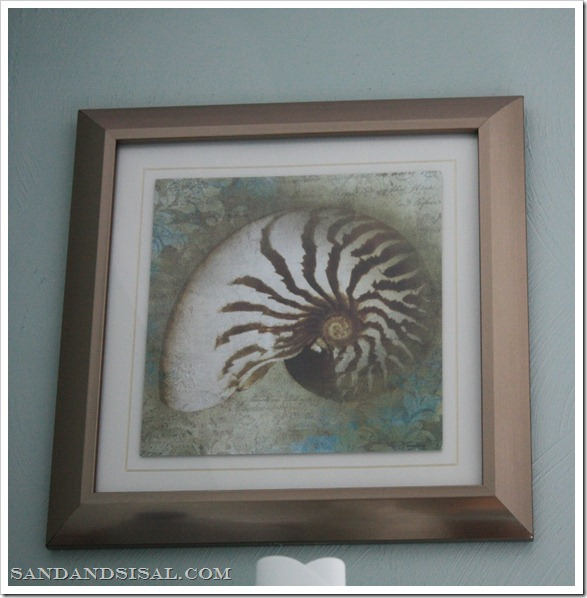 nautilus framed art 