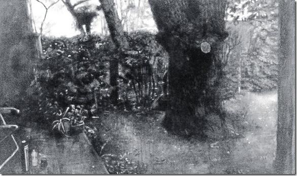 Jardín con árbol, Juan Andrés Videla