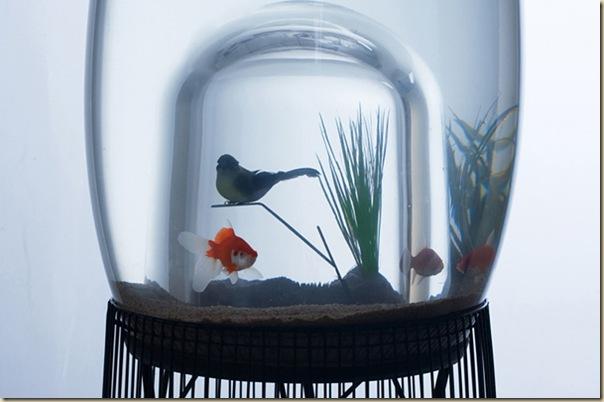 Aquariums créatifs et insolites-034