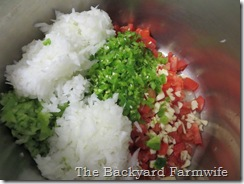 Our Favorite Salsa - The Backyard Farmwife