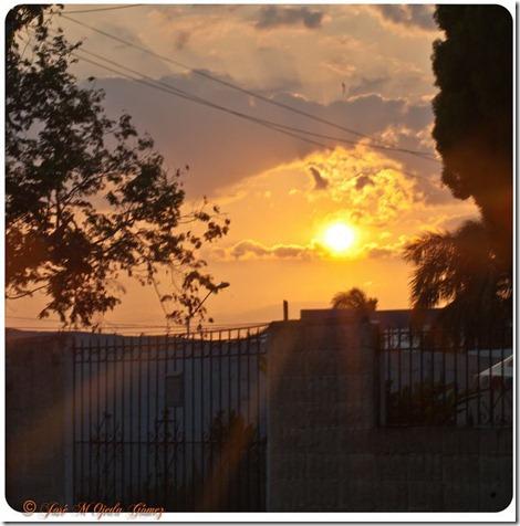 sunset3.1