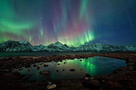 Arctic Auroras
