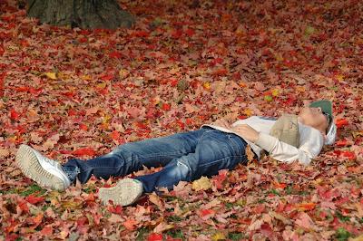 落ち葉に寝転んで紅葉を見上げる